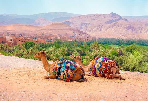 As Maravilhas do Marrocos - Premium - 2020-2021